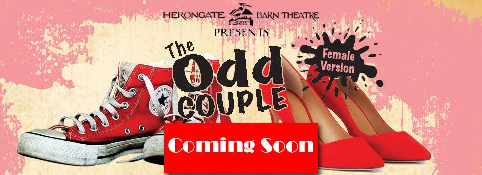 The Odd Couple – female version